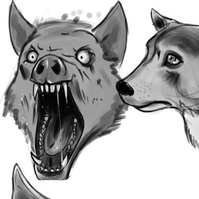 Shaun lindow sketchets animals