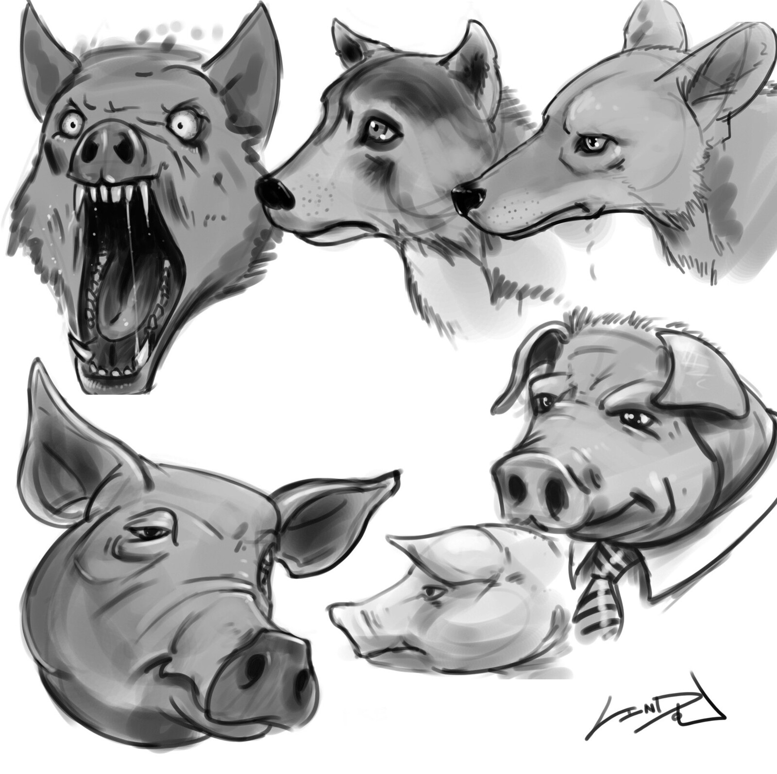 Sketches of some pigs and wolves.