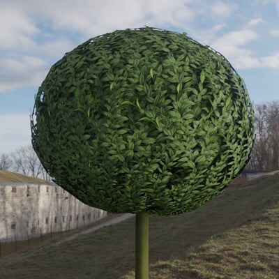 Dennis haupt 3dhaupt low poly box tree 1m modeled and textured by 3dhaupt in blender 2 91 6