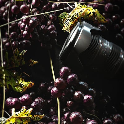 Ravissen carpenen grape world low