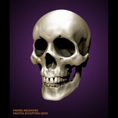 Daniel melendez boelian daniel m boelian melendez daniel skull quiz framed