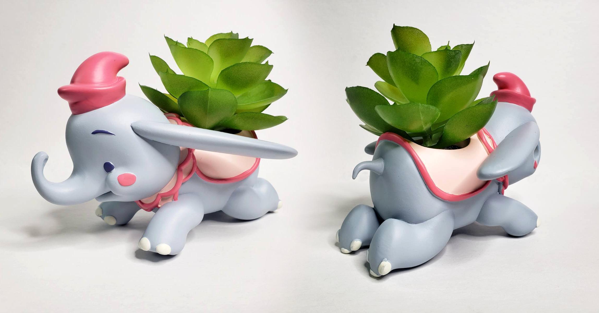 Dumbo Succulent Planter - Actual Product Image