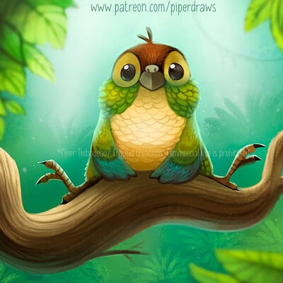 Piper thibodeau green cheek conure 3066 standardres 2021 04 13
