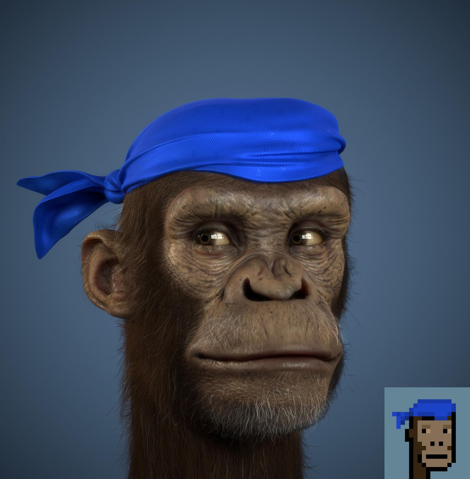 RealPunks Apes Series