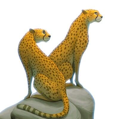 Arjun somasekharan cheetahs