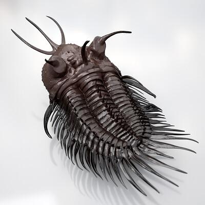 Eric keller trilobite 01