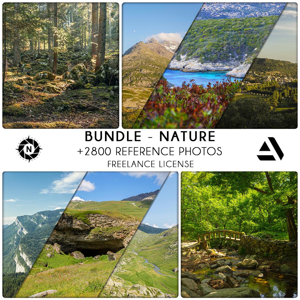 Bundle Reference Photos: Nature - Freelance License  https://www.artstation.com/a/6588630