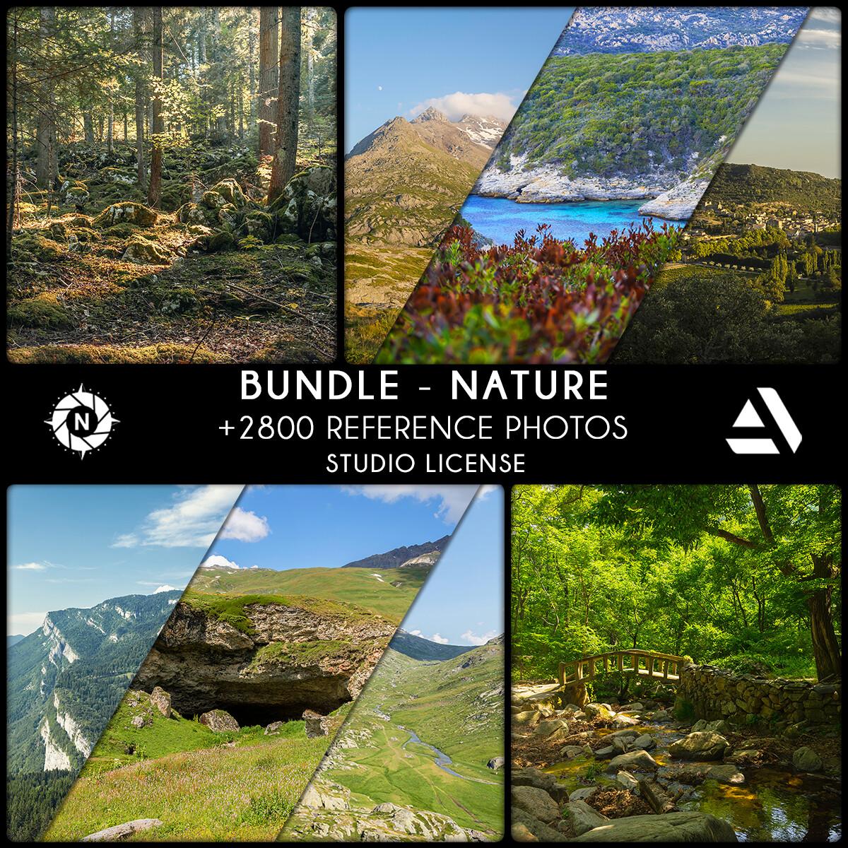 Bundle Reference Photos: Nature - Studio License  https://www.artstation.com/a/6588629