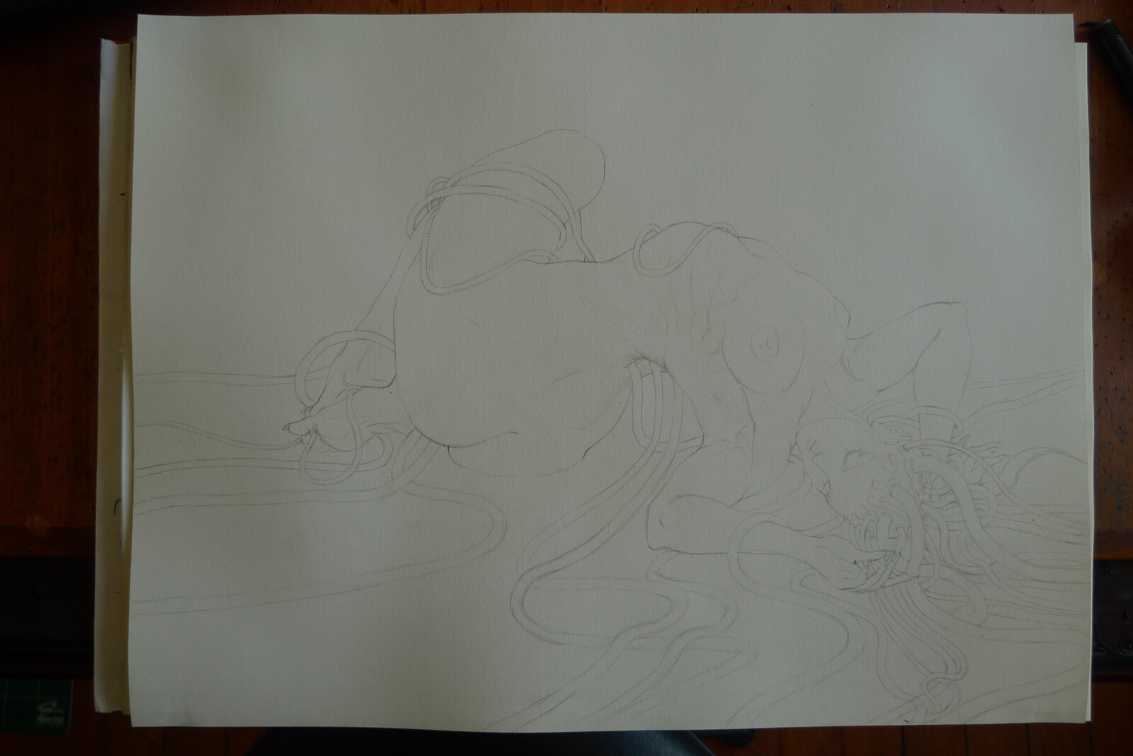 pencil lineart