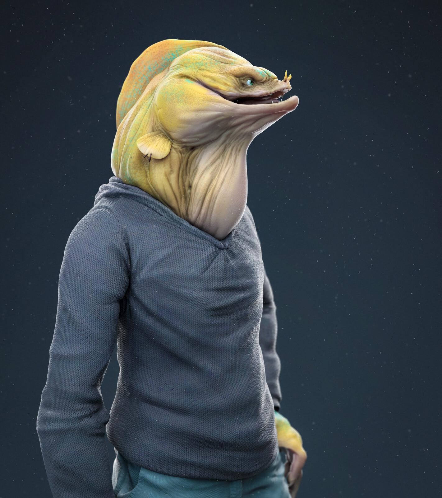 Mr Moray eel
