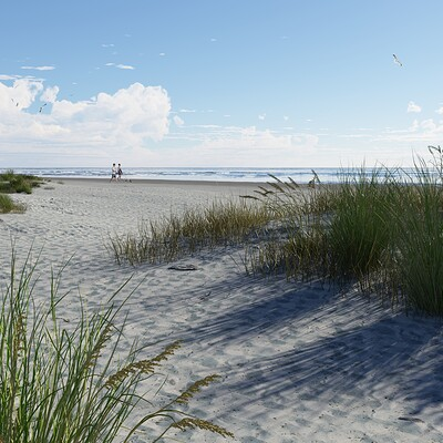 Jeffrey martinez 20210627tg a walk on the beach