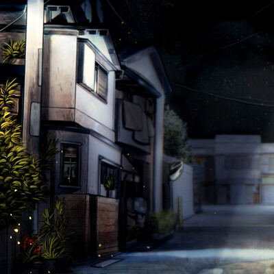 Alejandra alasxe galadi leiva barrio residencial noche