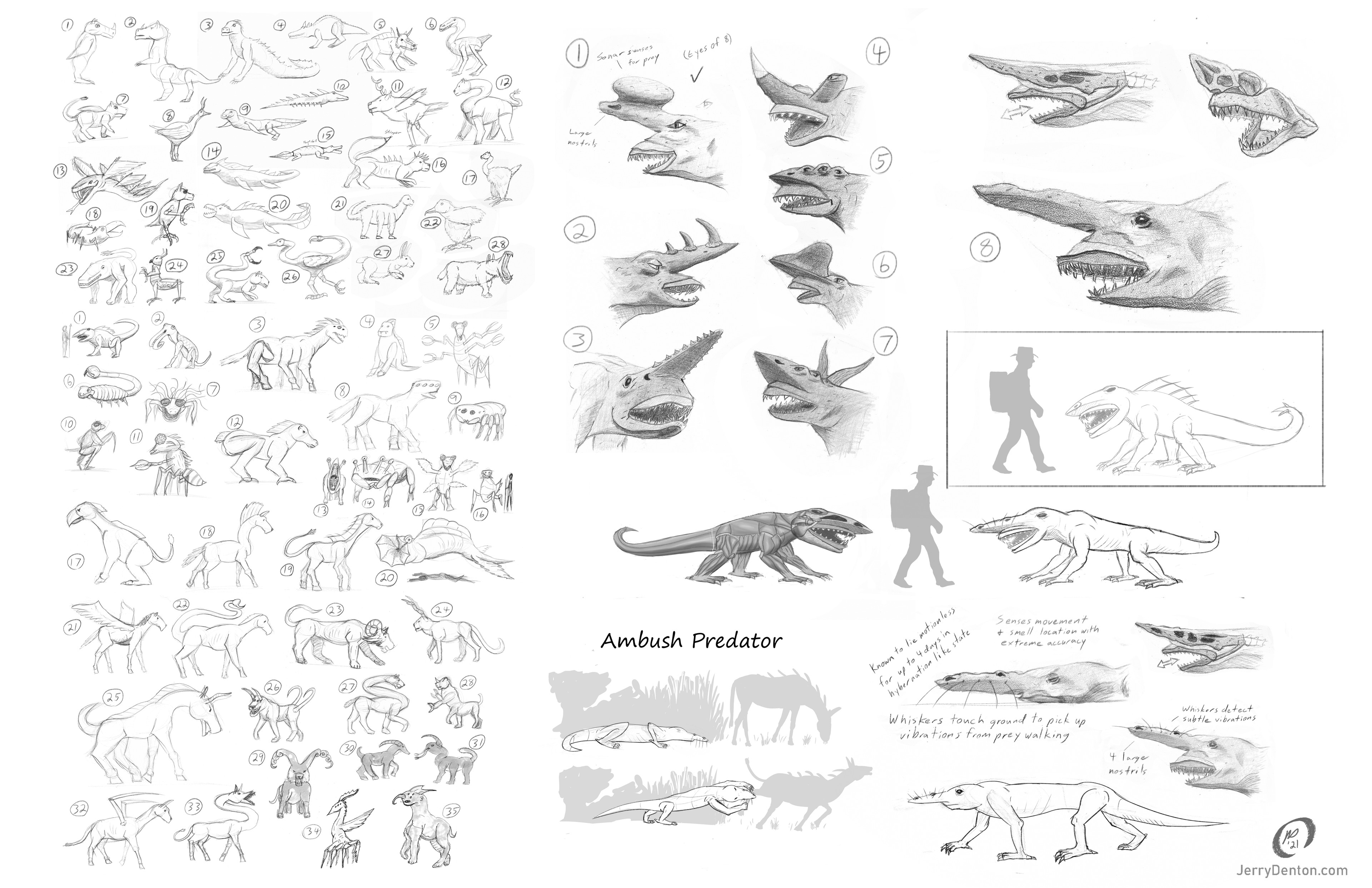 Some of the early exploration work. The design brief for this project was not very specific, so the blue sky phase was very broad and the creature gained life as we went.