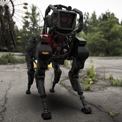 Amin akhshi 001 explosives detection dog