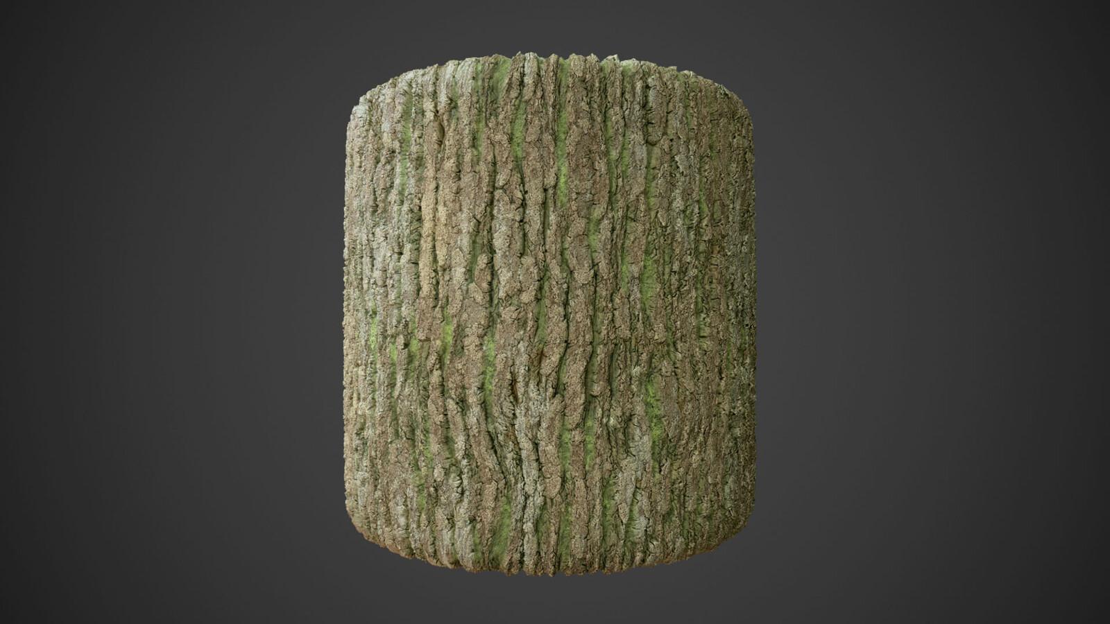 Bark created in Substance Designer
