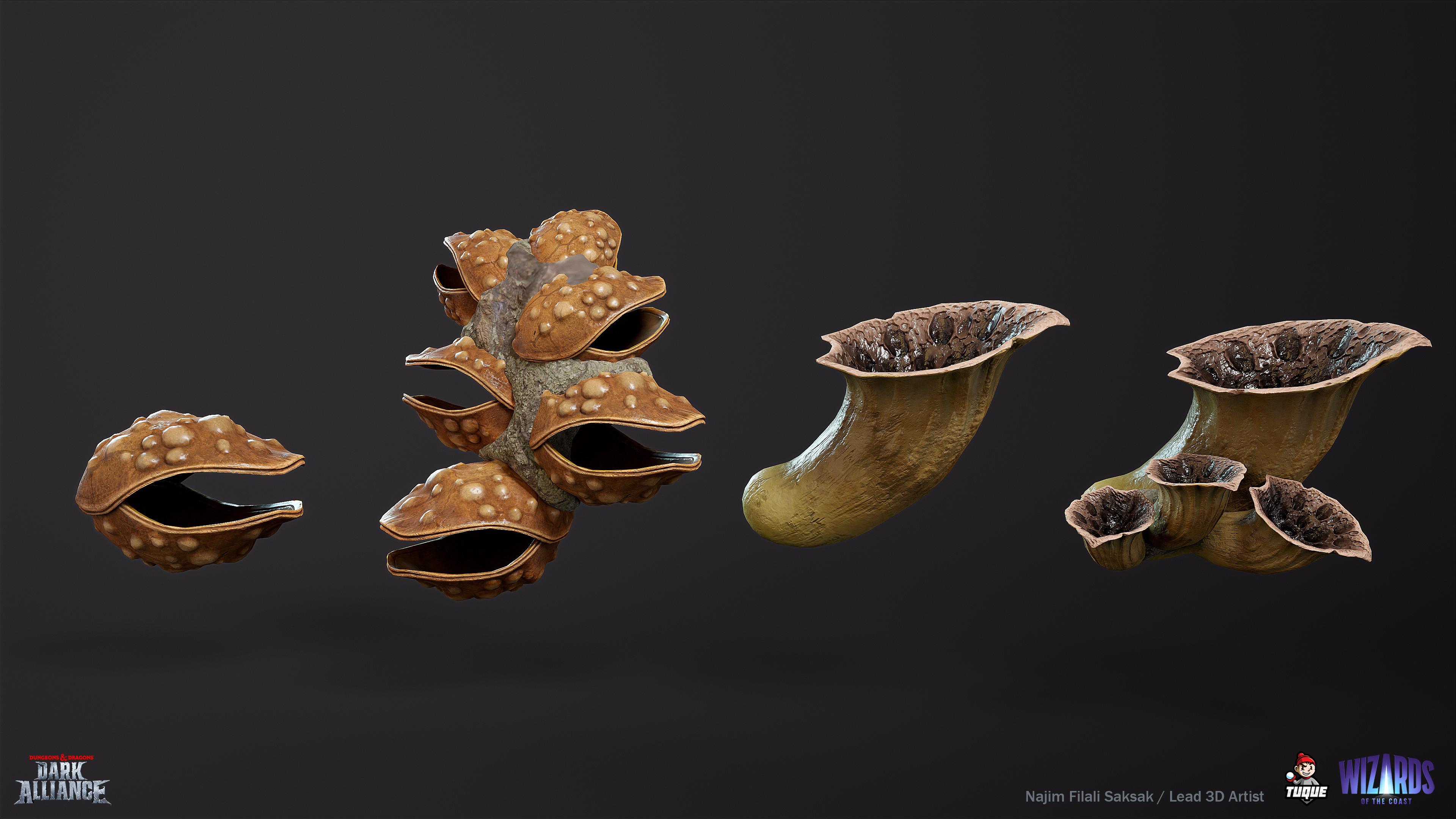 Mushroom set 02