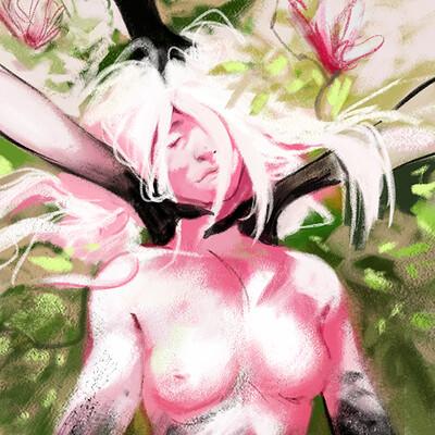 Paulina jaklik magnolia