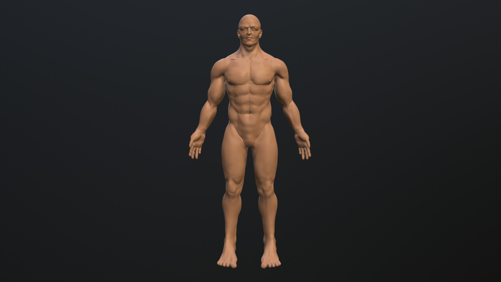 Male Anatomy Study Part 2
