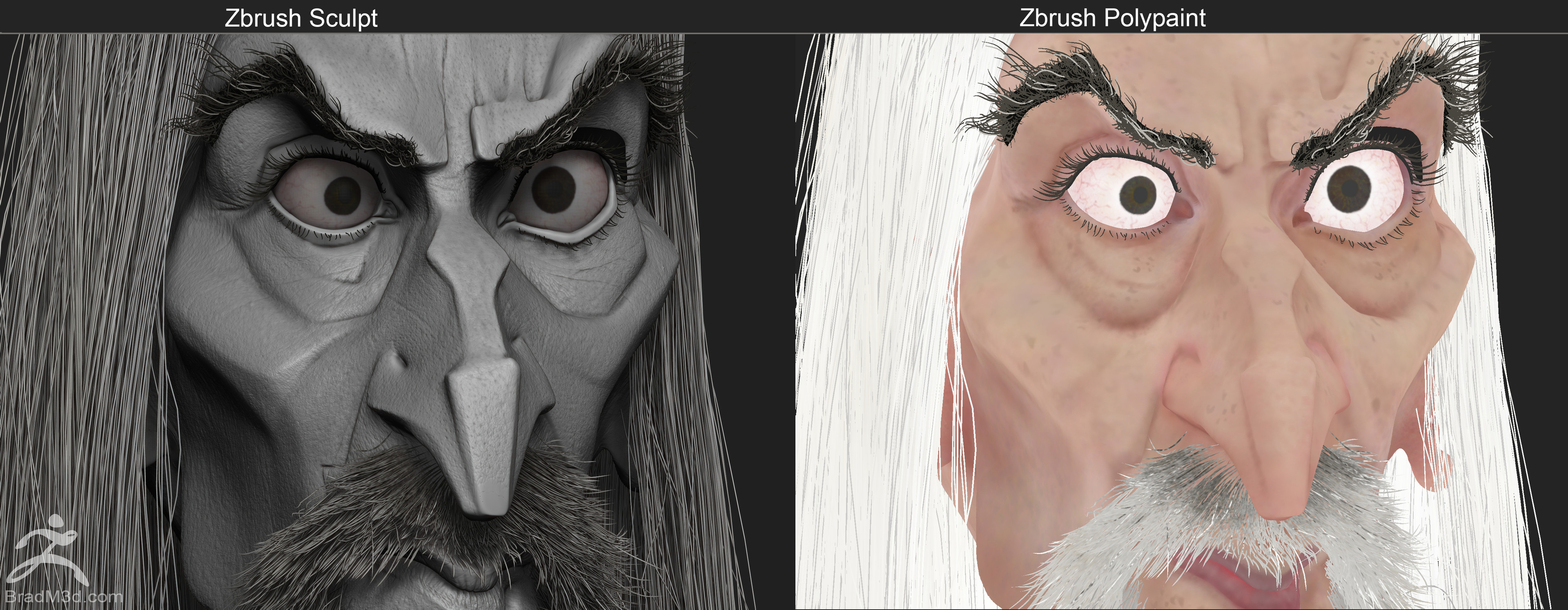 Simple Zbrush Sculpt BPR Render Closeup, and Flat Shaded polypaint demo