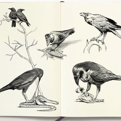 Jens claessens animalssketchbook8