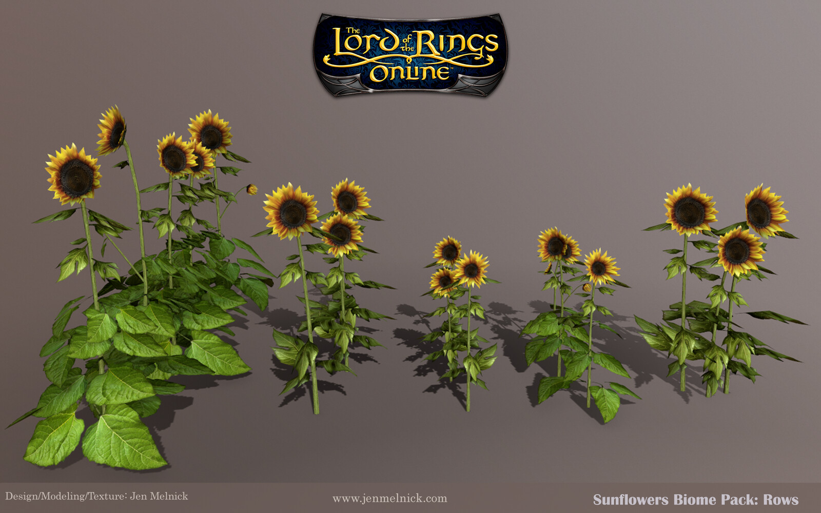 Sunflowers : Adult Stalk preset rows