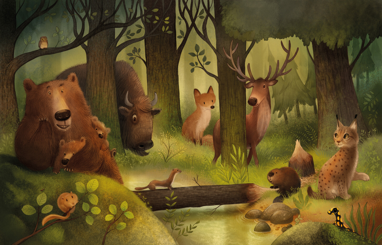 animals in a forest