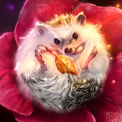 Bela rodrigues snuffle hedgehog web