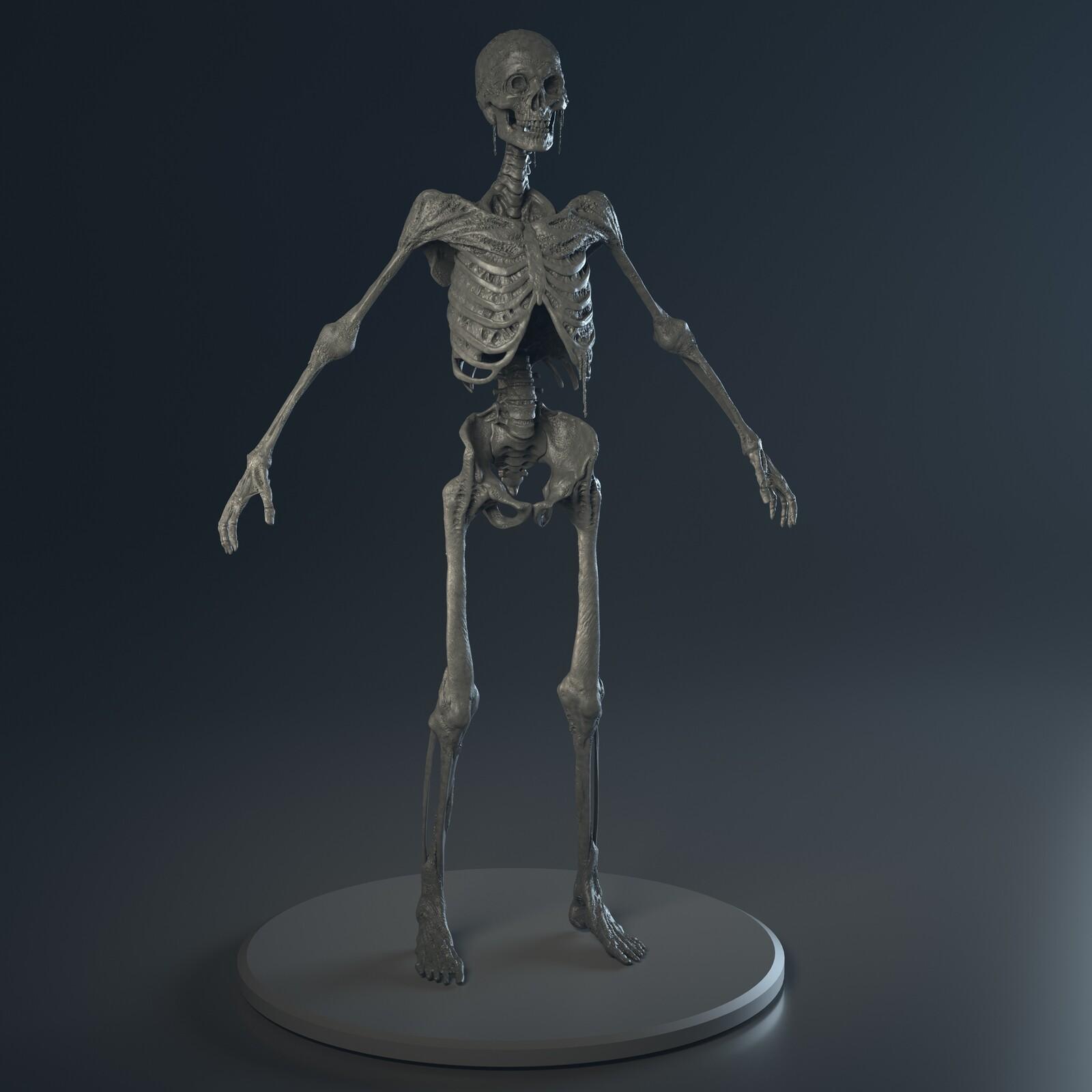 Generic Skeleton Enemy