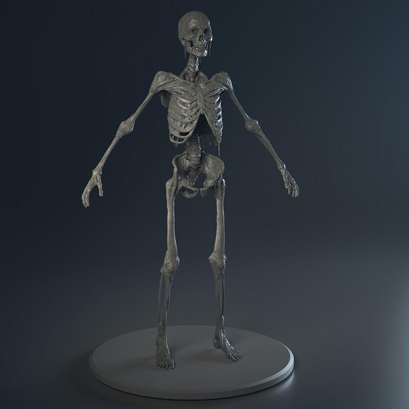 Generic Skeleton Enemy - High poly