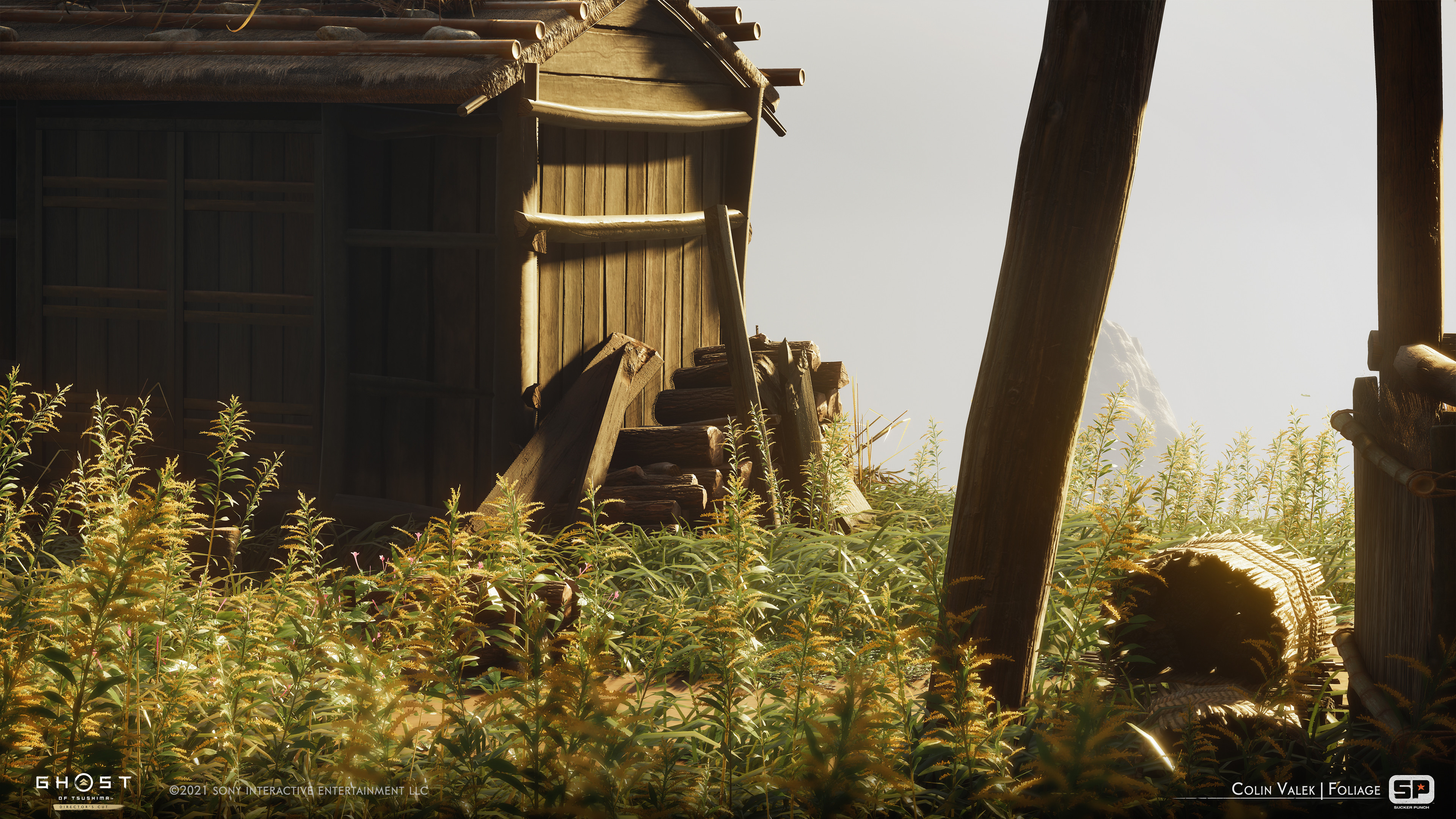 Goldenrod weeds.