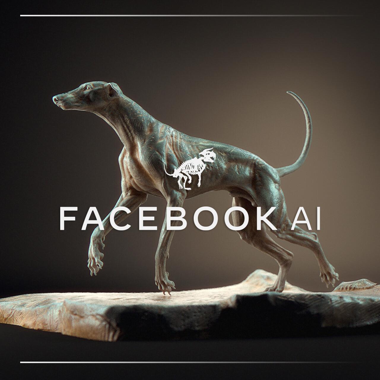 FAIR's (Facebook AI) project team members: Natalia Neverova (Lead, Research Scientist) Andrea Vevaldi (Research Scientist) Patrick Labatut (Software Engineering Manager) Ignacio Rocco (Postdoctoral Researcher)