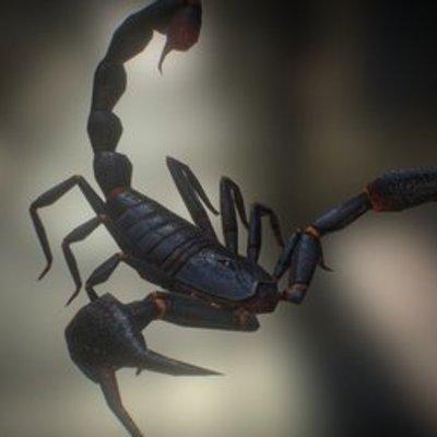 Scorpion 03, Emperor