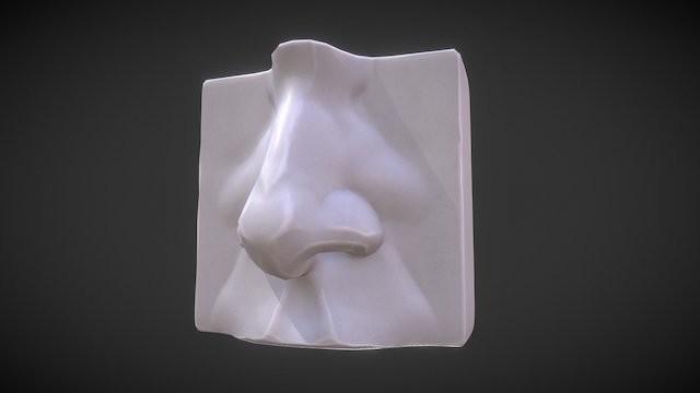 Anatomy Study - Nose