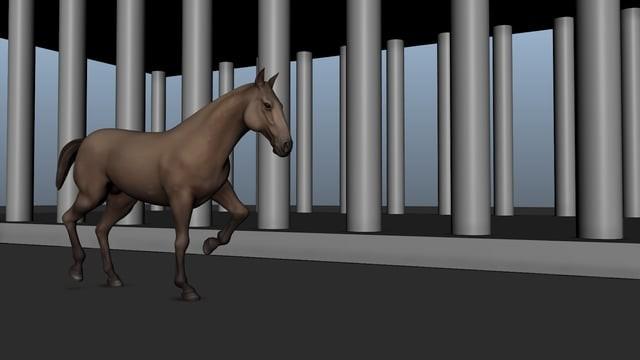 Horse Trot practice