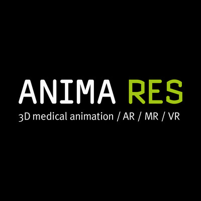 Technical Artist for real-time engines at ANIMA RES GmbH