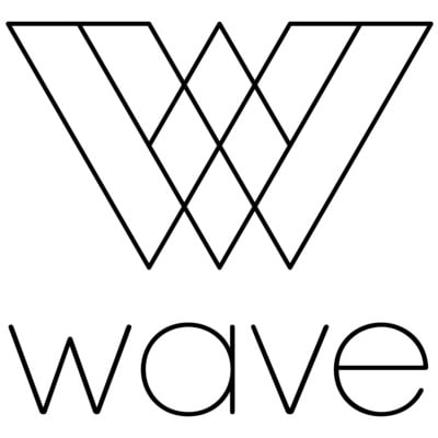 2019 wave transparent logo black