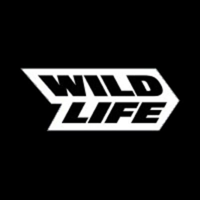 Visual Designer (All Levels) at Wildlife Studios