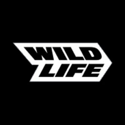 Real-Time VFX Artist (All Levels) at Wildlife Studios
