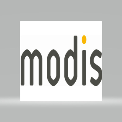 Level Artist  at Modis Canada Inc.