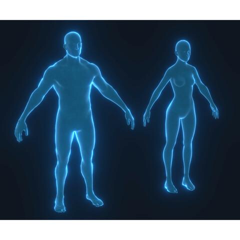 Human Hologram Male and Female 3D Model Bundle