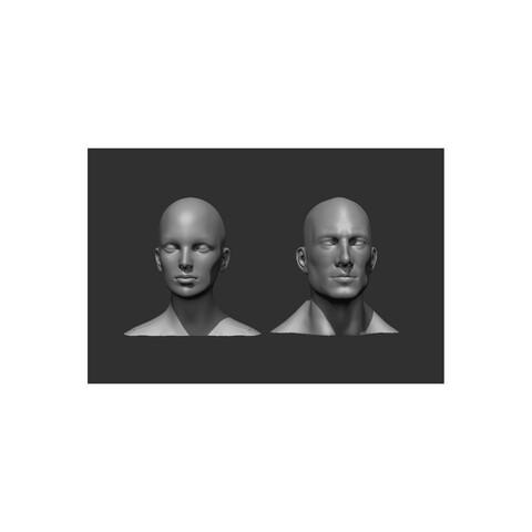 Male and Female Head Realistic Base Mesh 3D Model Bundle