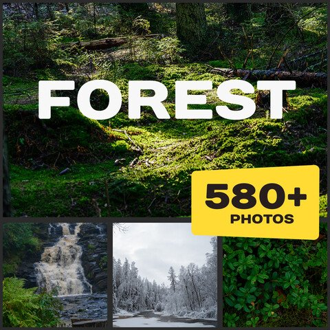 Forest Reference Pictures (Extended license)