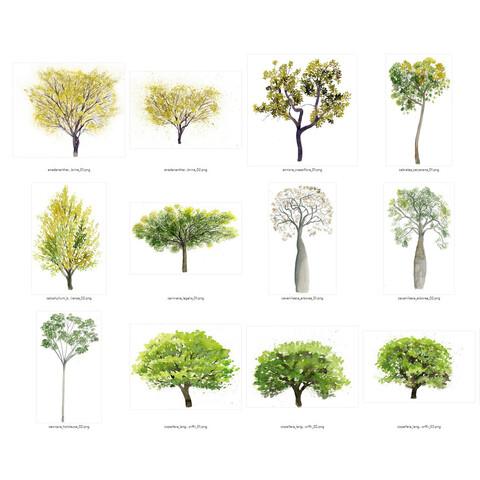 Watercolor Tree Cutout Full Pack