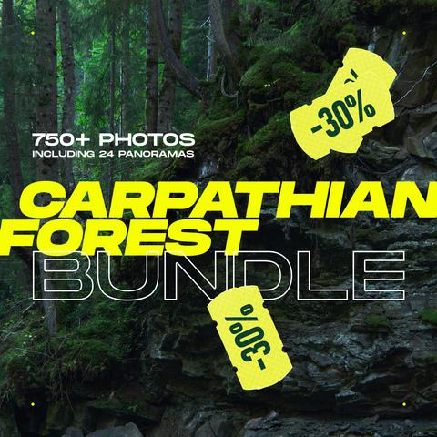 CARPATHIAN FOREST