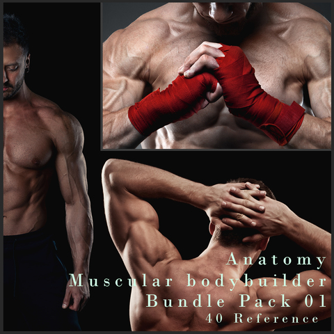 Anatomy Muscular Closeup - Bundle Pack_01