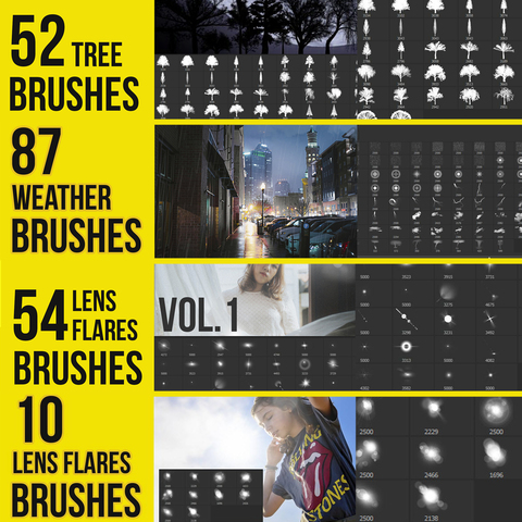 Natural Elements Brushes for Photoshop