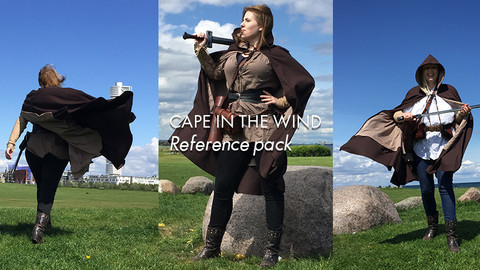 Cape in the wind reference pack