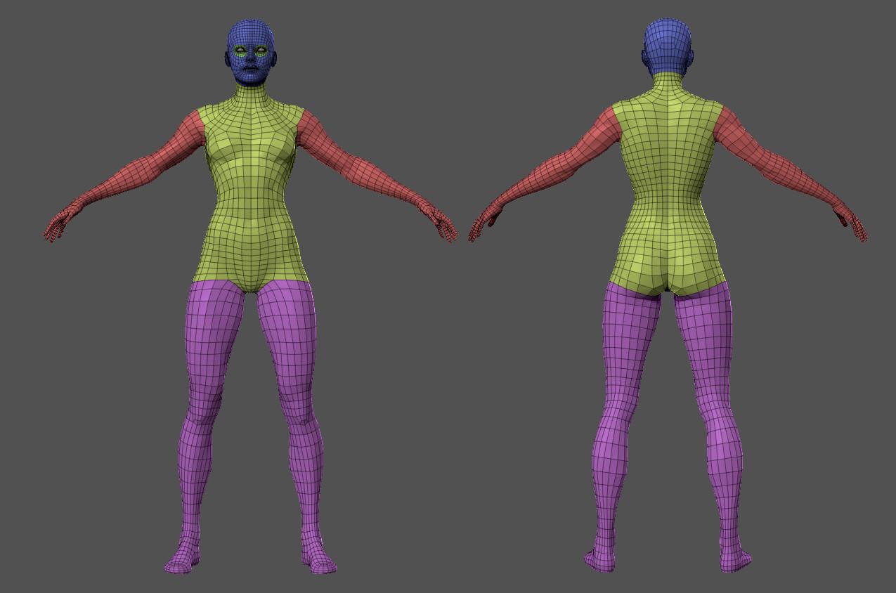 Superhero basemesh by alexlashko zbrush wire body01