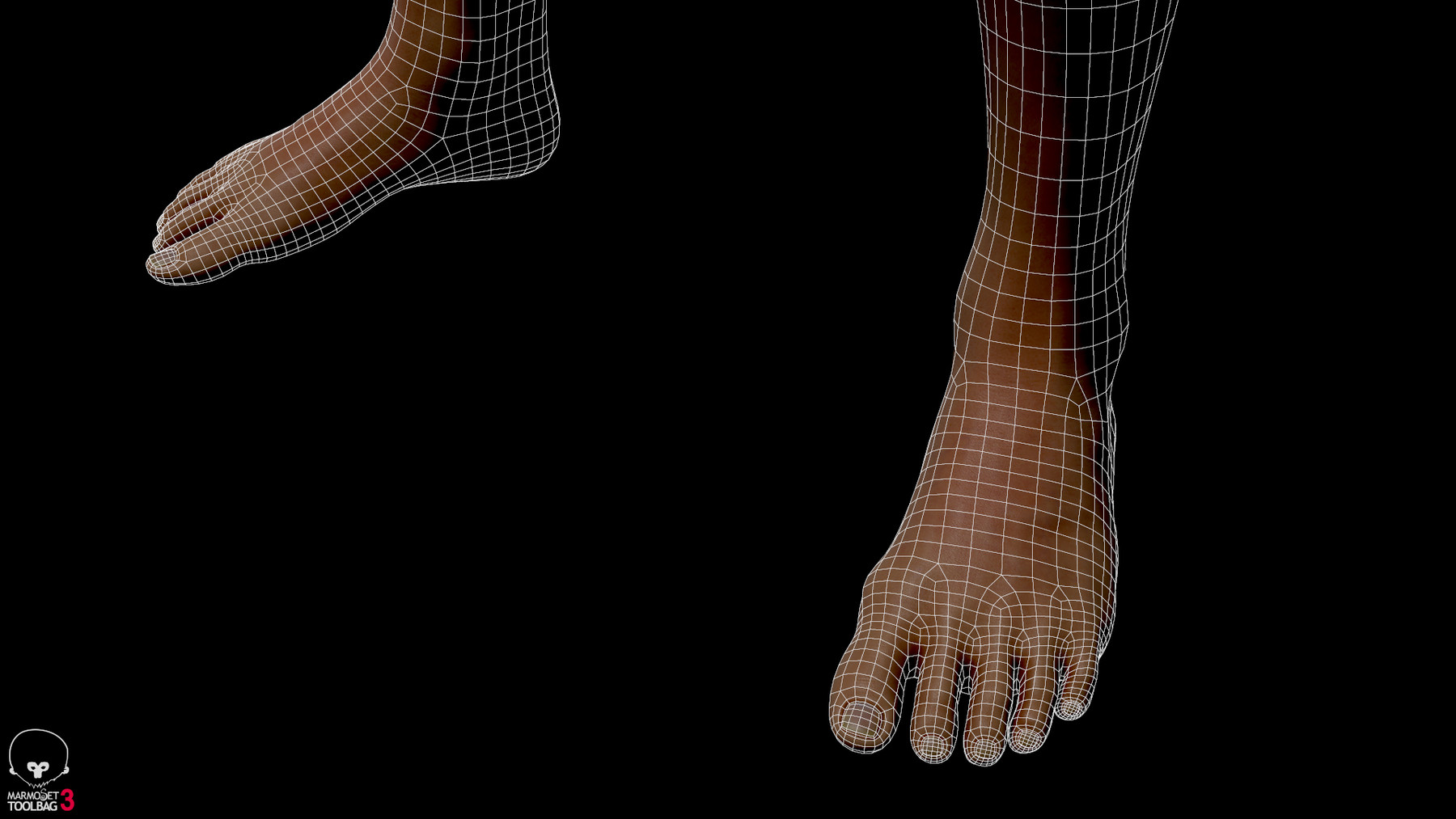 Averagemalebody by alexlashko wireframe 06