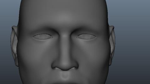 Head Geometry MultiUV 3D model